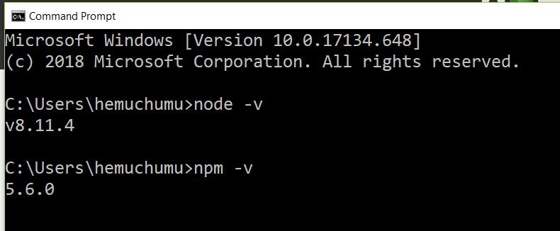 Node and NPM version command